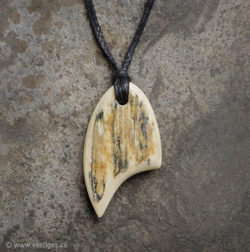 Vestiges bijoux pr historiques pendentif en ivoire de - Comment reconnaitre de l ivoire ...